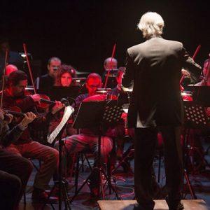 """Read more about the article Iorestoacasa, ma con la musica  """"Musica a distanza ravvicinata"""": la proposta web della G.O.G."""