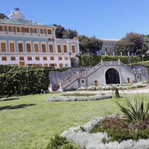 Read more about the article La Tosse d'estate raddoppia